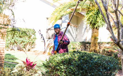 The Most Common Property Maintenance Issues for Tampa Bay Homeowners (and What to Do About Them)