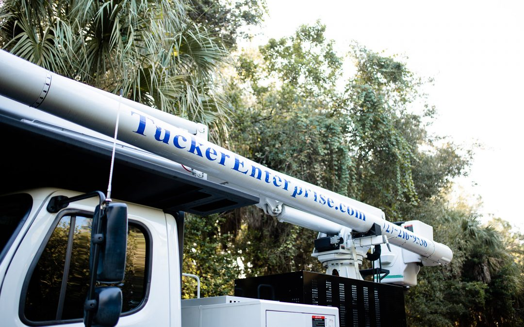 Tree Removal in Tampa Requires Top-of-the-Line Equipment. Here's How Tucker Enterprise Delivers.