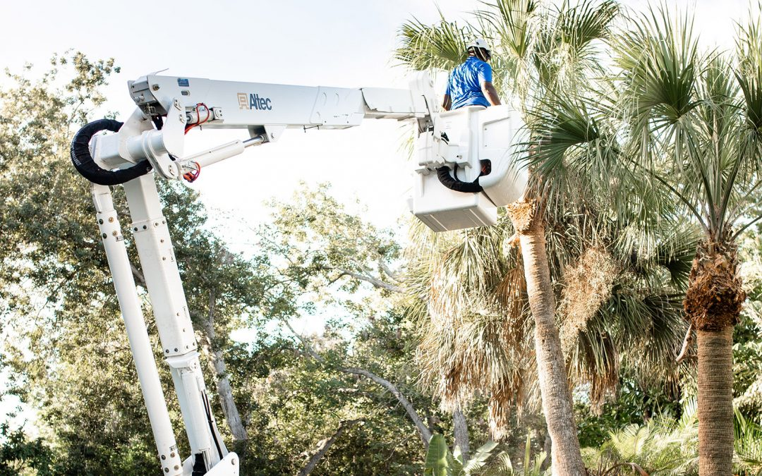 If you have tight spots on your property that need attention, find a company that has a backyard lift. Here's why.