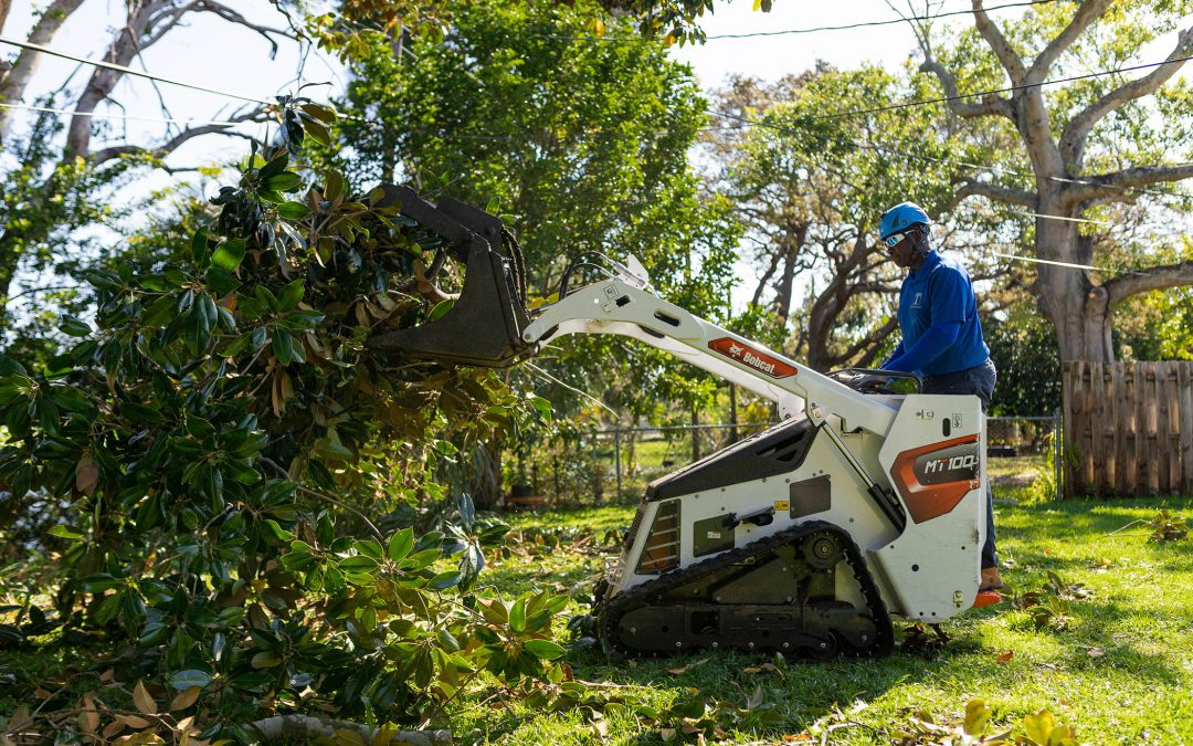 Can you even prepare your shrubs and bushes for storm season? Everything you need to know.