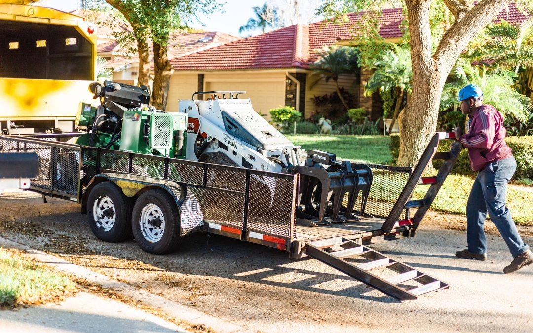 Is Stump Grinding Necessary After Tree Removal? Here's Why This Underrated Step Can Seriously Impact Your Property.